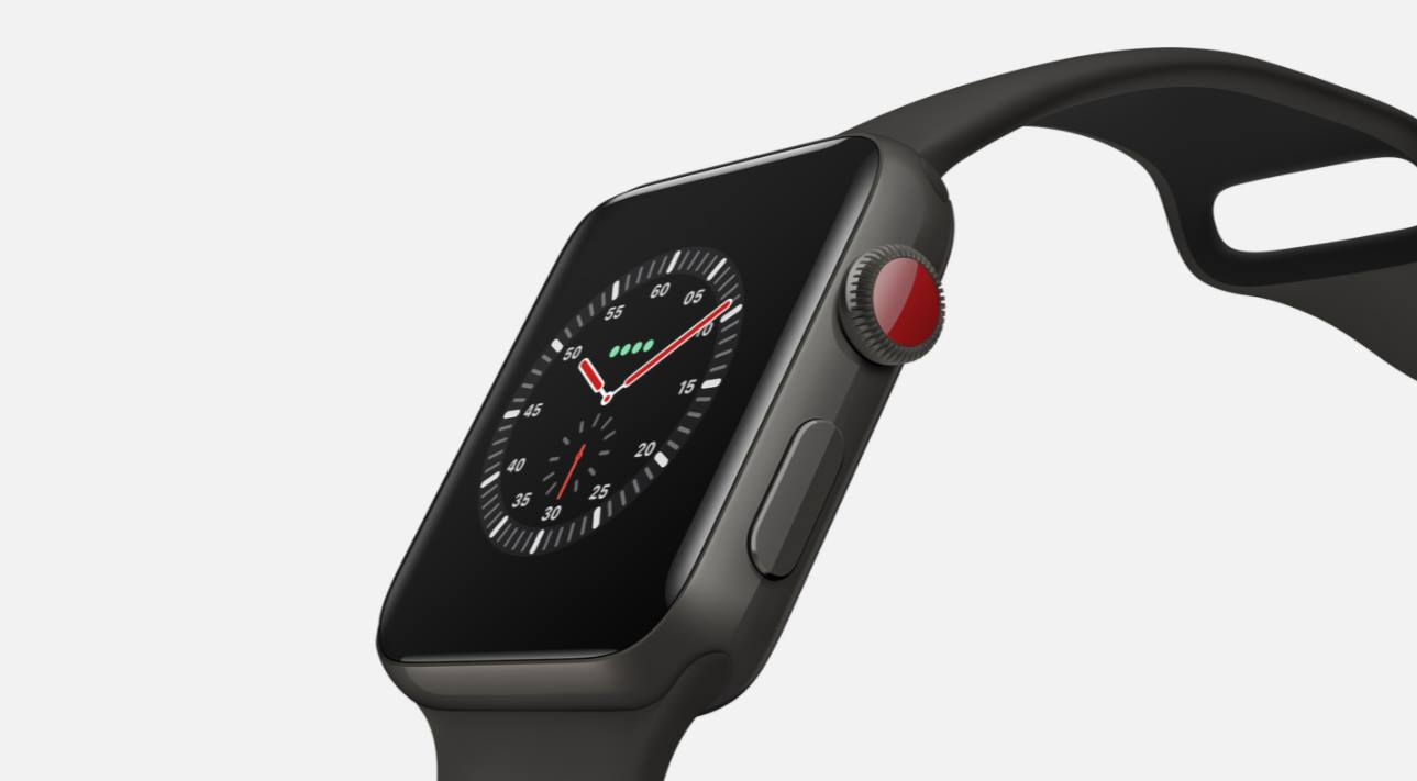 Apple Watch Edition Series 3 (3)