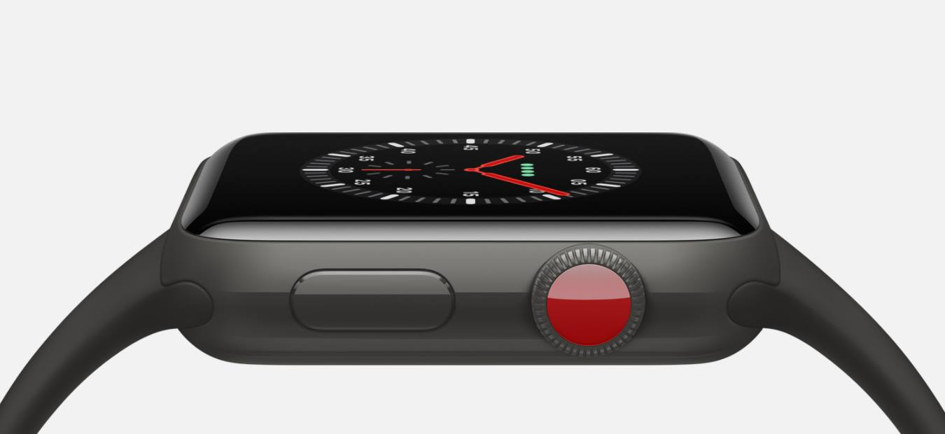 Apple Watch Edition Series 3 (5)