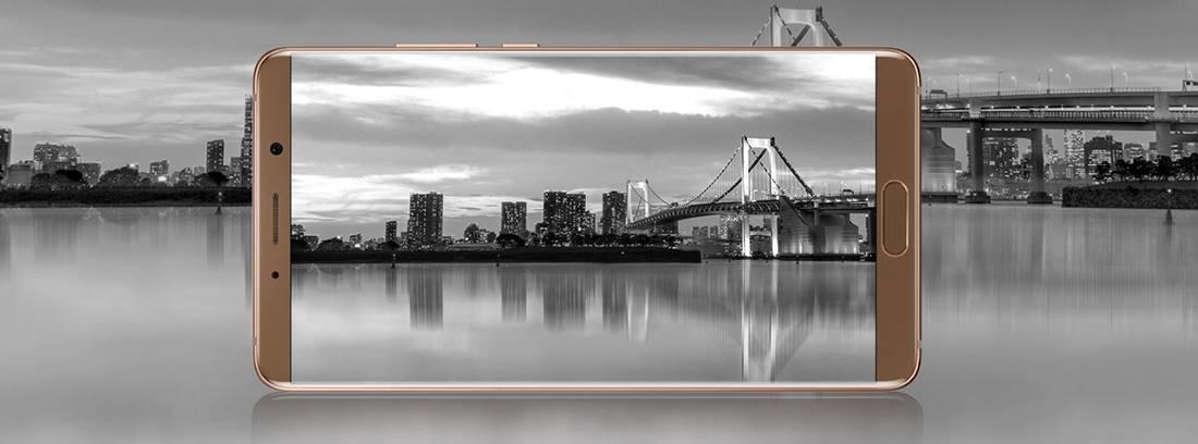 Huawei Mate 10 (6)